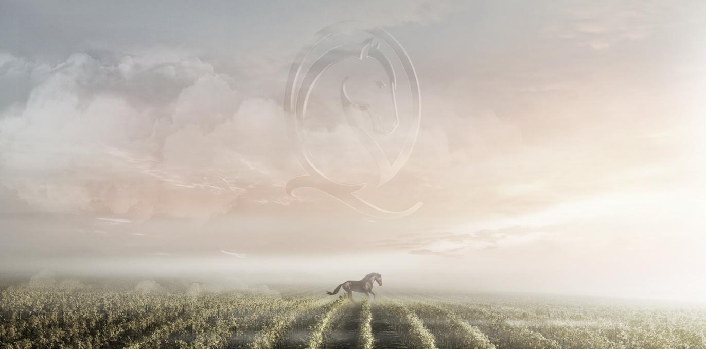 cheval-quancard-pferd-neu